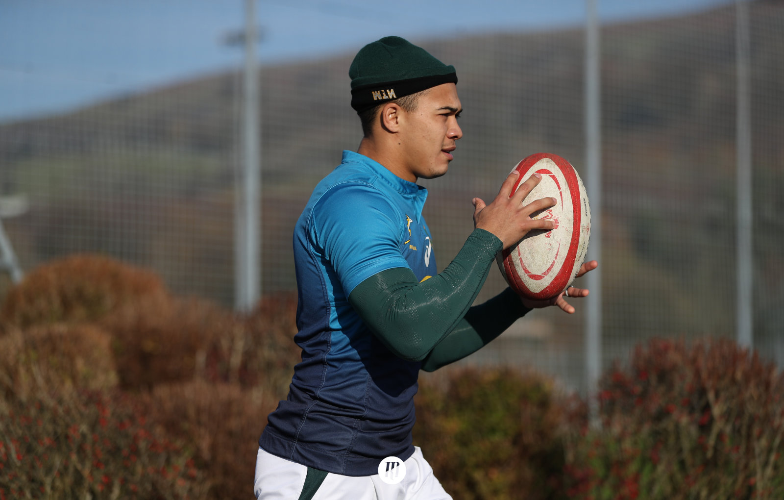 How brightspark Cheslin Kolbe can return the Springboks to their force of old